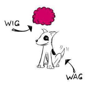 WigWag 2