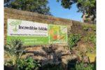 Incredible Edible