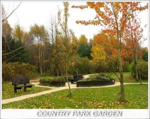 Country Park Garden, 2010